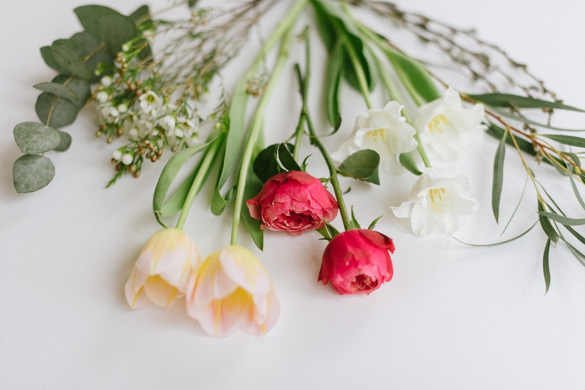 Tulpe und Frühlingsblumen