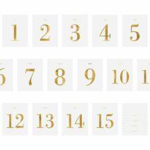 Tischnummern weiß gold