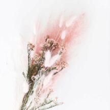 Trockenblumenstrauß rosa