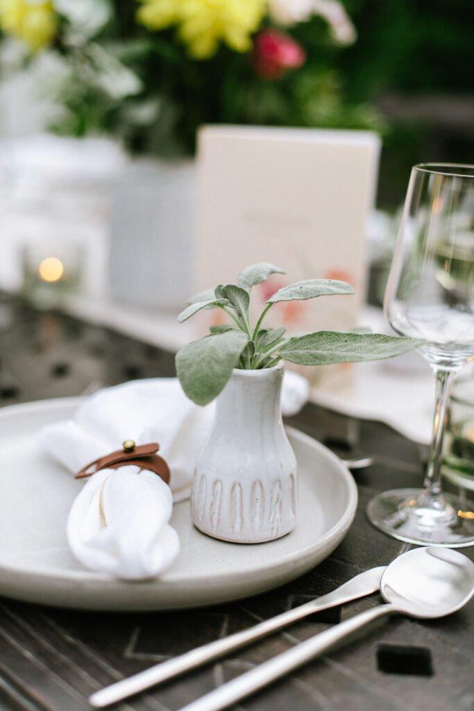 Mini Pflanze auf Teller