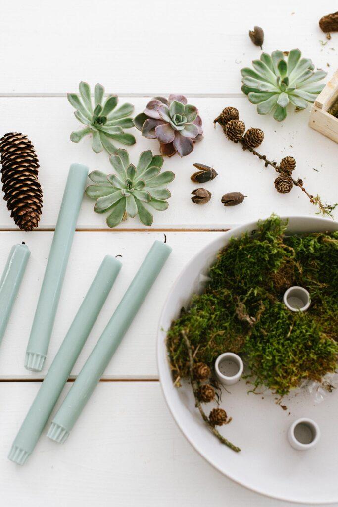 DIY Kerzenschale mit Sukkulenten als minimalistischen Adventskranz. Kerzenschale mit natürlichen Materialien füllen und Stabkerzen anzünden.