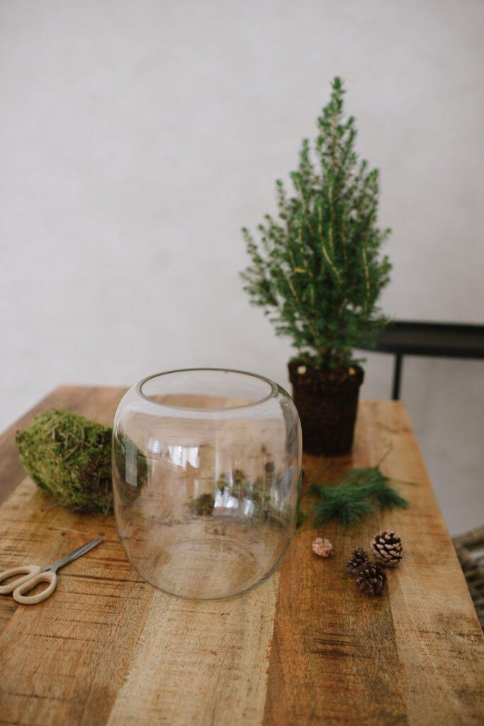 DIY Idee: Tannenbäumchen in Vase