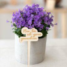 Blumenstecker Hier bin ich gerne gewachsen
