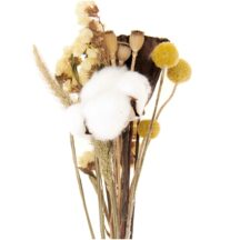 Trockenblumen Set, natur gelb