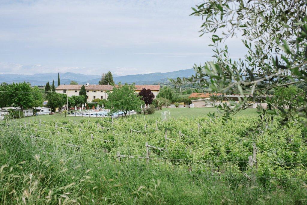 Weingut Le Caldane am Gardasee