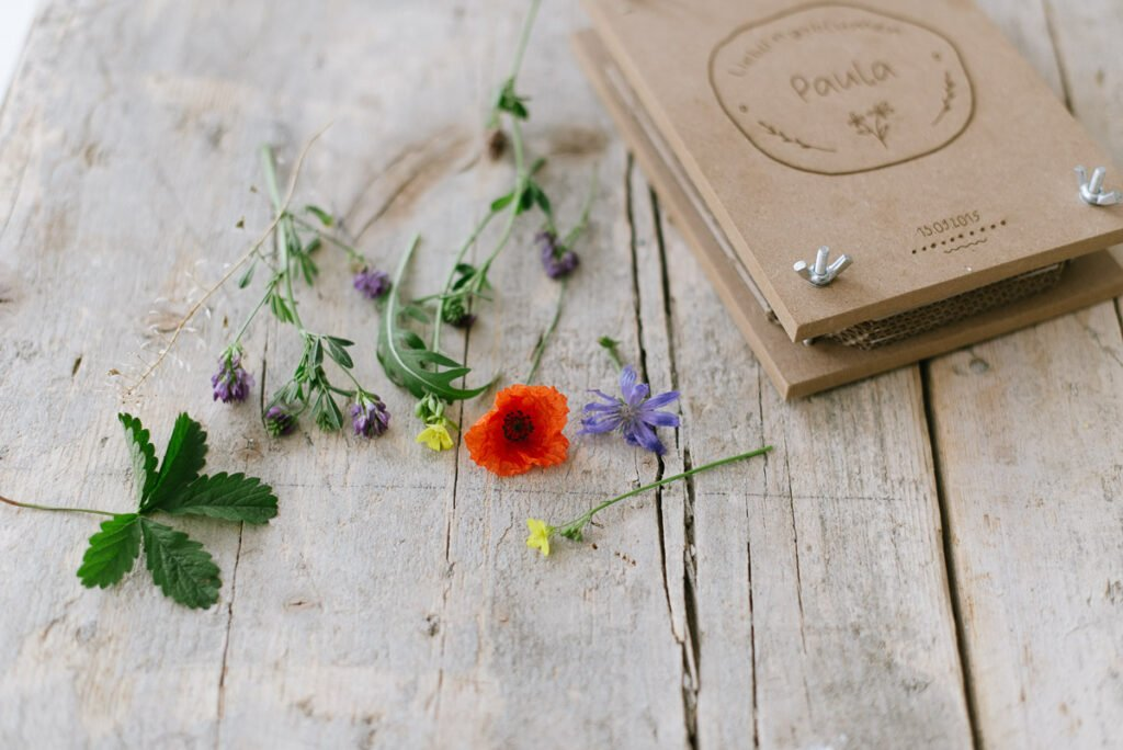 Diese Blumen und Blätter eignen sich zum Pressen und trocknen.