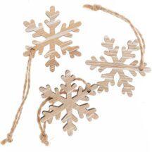 Anhaenger Schneeflocke natur
