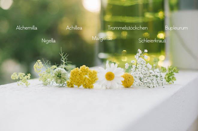 Welche Blumen blühen im Juni