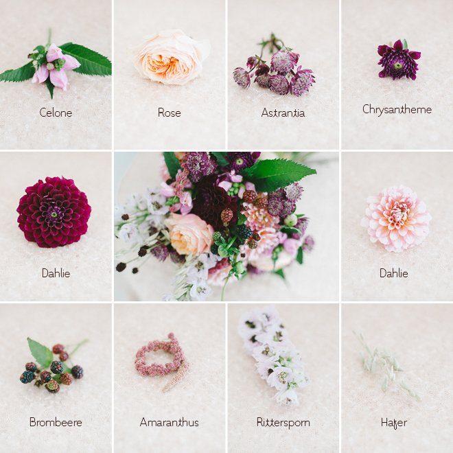 Brautstraußgalerie September - Übersicht Blumen Welche Blumen gibt es und welche passen zusammen
