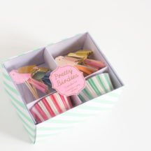cupcake-kit-pretty-birdies-1
