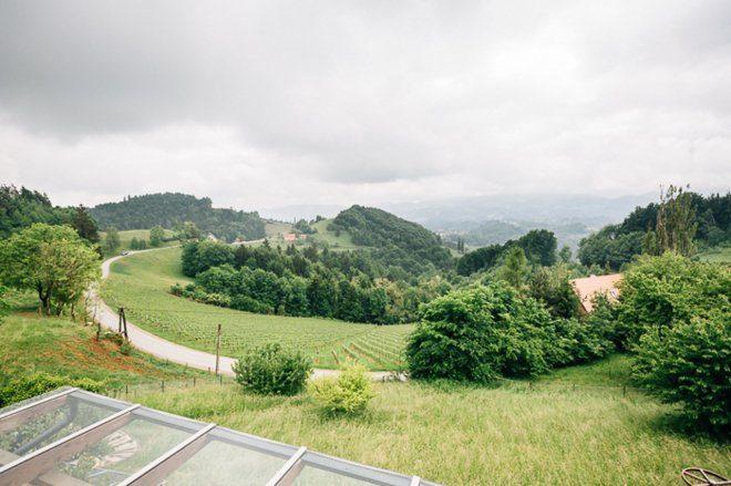 Hochzeit im Weingut Holler von Bernhard Luck11