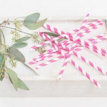 Papierstrohhalme Trinkhalme Röhrchen gestreift gepunktet in verschiedenen Farben-027
