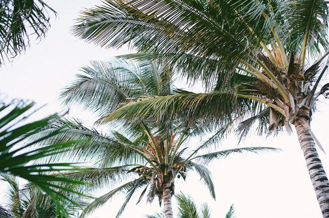 Per Aquum Essque Zalu Zanzibar Erfahrungen10