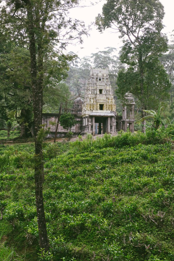 Tempel in Teeplantage Sri Lanka
