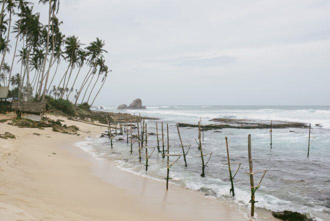 sri-lanka Stelzenfischer