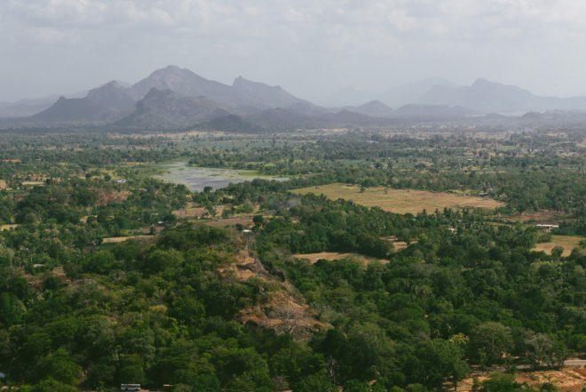 Flitterwochen auf Sri Lanka mit Rundreise