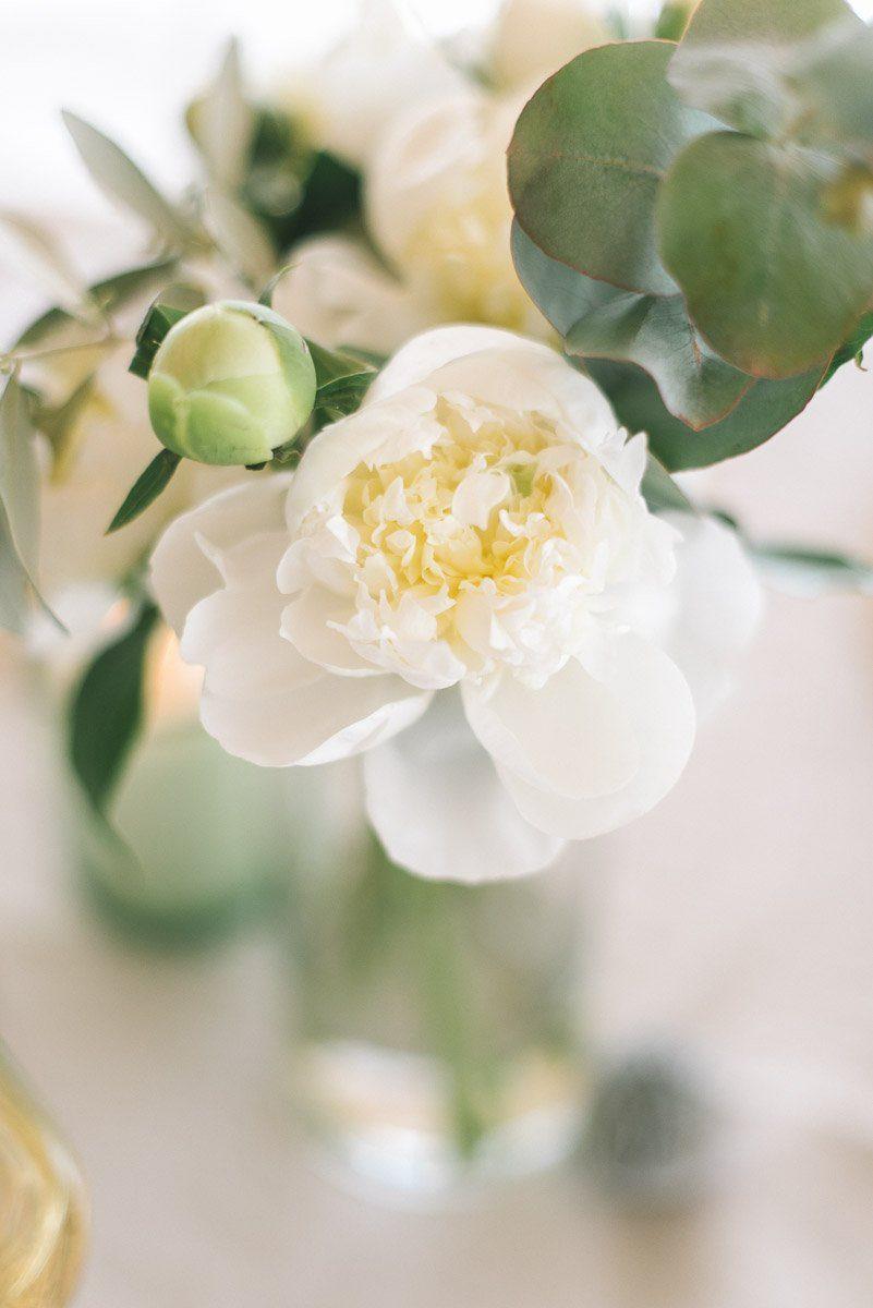 Weiße Pfingstrosen als Tischdekoration - mehr im Blogpost