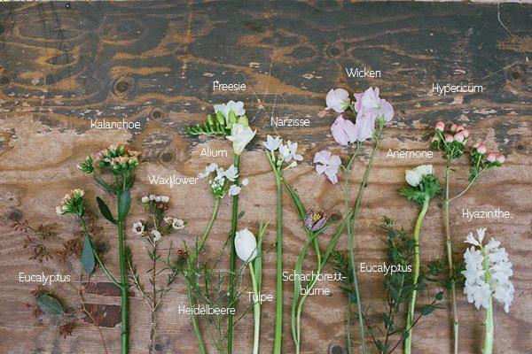 Welche Blumen im Winterbrautstrauß