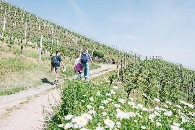 Wellnesswochenende mit wandern in Durbach10