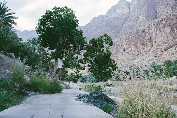 reiseziel Orient für die Flitterwochen Oman8