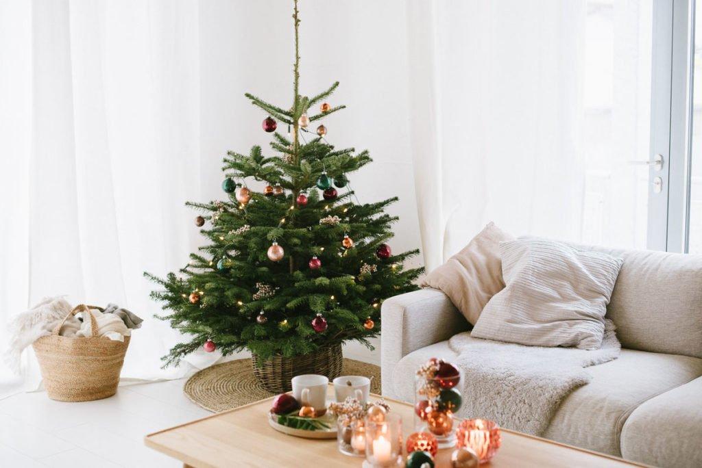 Gutschein Weihnachtsbaum.Weihnachtsbaum Von Blume2000 De Und Ein 30 Euro Gutschein Für Euch Fräulein K Sagt Ja Hochzeitsblog